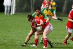 ballylanders ladies senior county final 2015 (25)