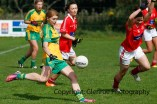 ballylanders ladies senior county final 2015 (30)