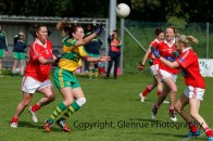 ballylanders ladies senior county final 2015 (36)