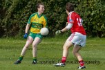 ballylanders ladies senior county final 2015 (42)