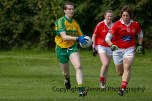 ballylanders ladies senior county final 2015 (43)