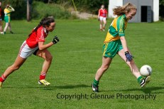 ballylanders ladies senior county final 2015 (45)