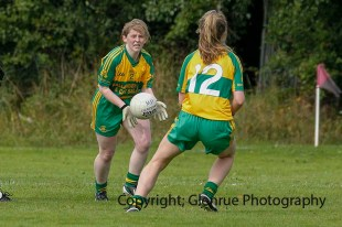 ballylanders ladies senior county final 2015 (57)