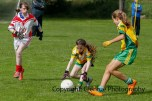 ballylanders ladies senior county final 2015 (59)