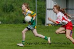 ballylanders ladies senior county final 2015 (61)