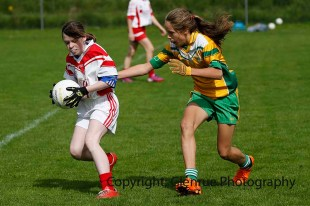 ballylanders ladies senior county final 2015 (62)
