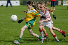 ballylanders ladies senior county final 2015 (64)