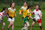 ballylanders ladies senior county final 2015 (69)