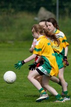 ballylanders ladies senior county final 2015 (70)
