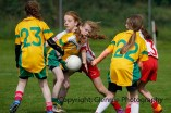 ballylanders ladies senior county final 2015 (71)
