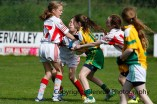 ballylanders ladies senior county final 2015 (72)