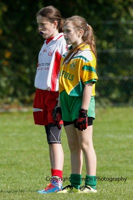 ballylanders ladies senior county final 2015 (82)