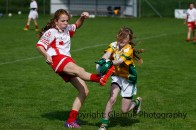 ballylanders ladies senior county final 2015 (83)