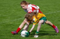 ballylanders ladies senior county final 2015 (84)