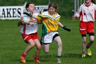 ballylanders ladies senior county final 2015 (85)