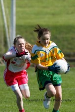 ballylanders ladies senior county final 2015 (88)