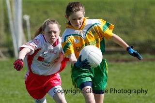 ballylanders ladies senior county final 2015 (89)