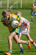 ballylanders ladies senior county final 2015 (90)