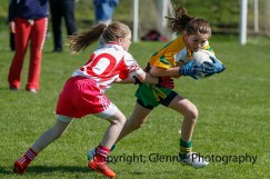 ballylanders ladies senior county final 2015 (93)