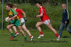 ballylanders ladies senior county final 2015 (94)