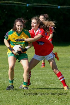 ballylanders ladies senior county final 2015 (96)