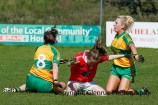 ballylanders ladies senior county final 2015 (99)