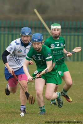 limerick v waterford minor camogie 3-4-2016 (1)