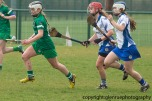 limerick v waterford minor camogie 3-4-2016 (10)