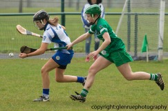 limerick v waterford minor camogie 3-4-2016 (11)