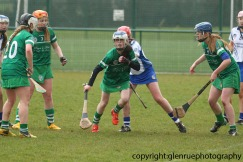 limerick v waterford minor camogie 3-4-2016 (12)
