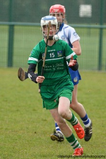 limerick v waterford minor camogie 3-4-2016 (13)