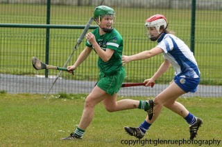 limerick v waterford minor camogie 3-4-2016 (14)