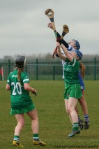 limerick v waterford minor camogie 3-4-2016 (15)
