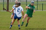 limerick v waterford minor camogie 3-4-2016 (16)