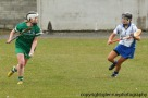 limerick v waterford minor camogie 3-4-2016 (19)