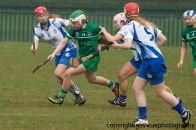 limerick v waterford minor camogie 3-4-2016 (2)