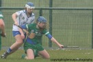 limerick v waterford minor camogie 3-4-2016 (20)