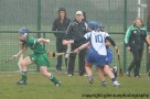 limerick v waterford minor camogie 3-4-2016 (21)