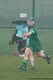 limerick v waterford minor camogie 3-4-2016 (22)