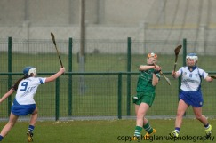 limerick v waterford minor camogie 3-4-2016 (26)