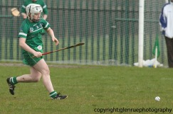 limerick v waterford minor camogie 3-4-2016 (27)