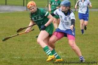 limerick v waterford minor camogie 3-4-2016 (29)
