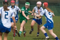 limerick v waterford minor camogie 3-4-2016 (3)