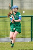 limerick v waterford minor camogie 3-4-2016 (30)