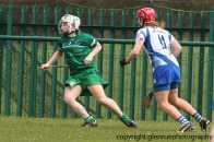 limerick v waterford minor camogie 3-4-2016 (31)
