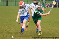 limerick v waterford minor camogie 3-4-2016 (32)