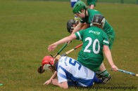 limerick v waterford minor camogie 3-4-2016 (33)