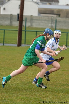limerick v waterford minor camogie 3-4-2016 (34)