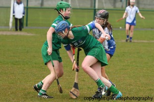 limerick v waterford minor camogie 3-4-2016 (35)