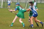 limerick v waterford minor camogie 3-4-2016 (36)